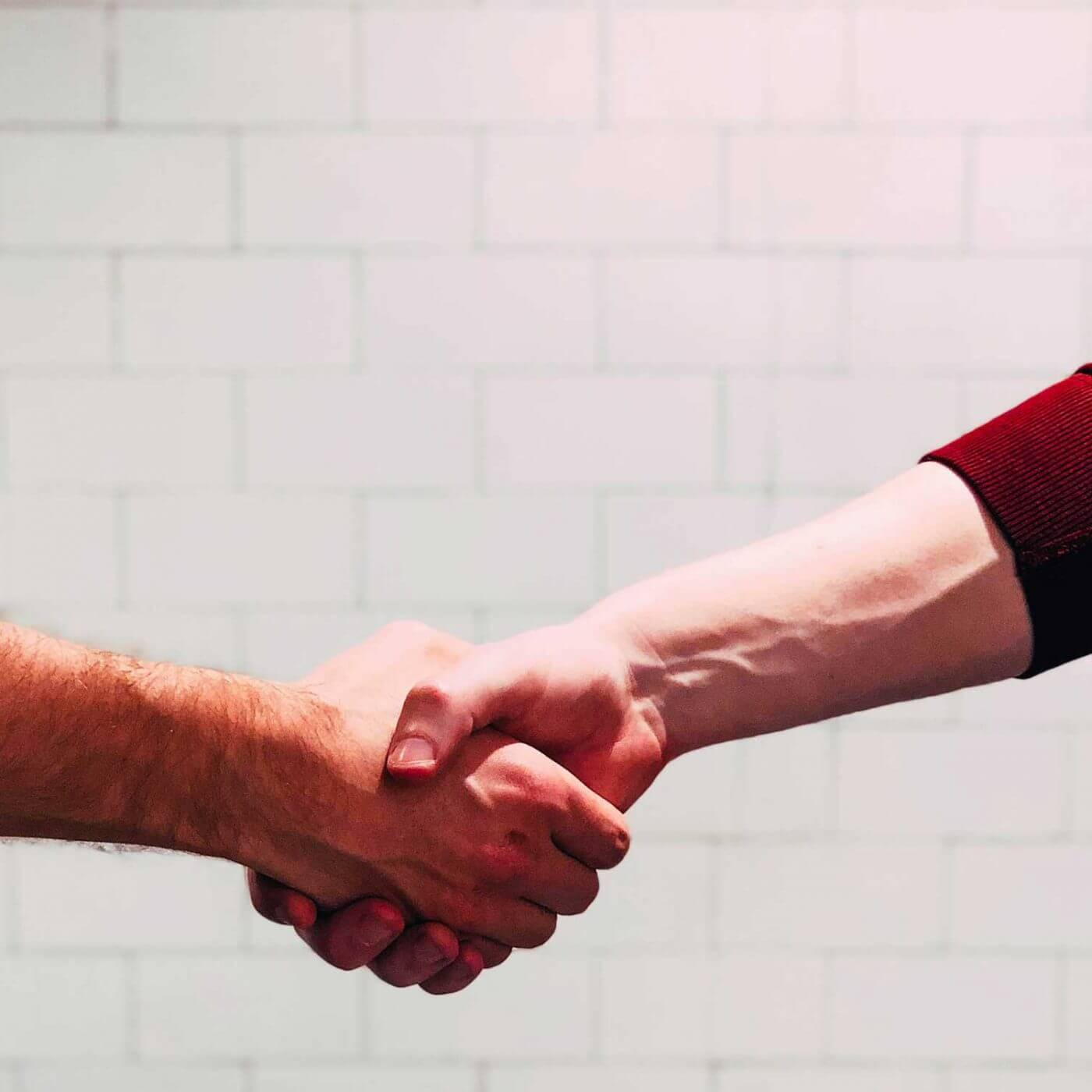 A closeup of two people shaking hands.